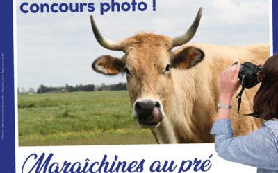 """Le concours photo """"Maraîchines au pré"""" est ouvert !"""